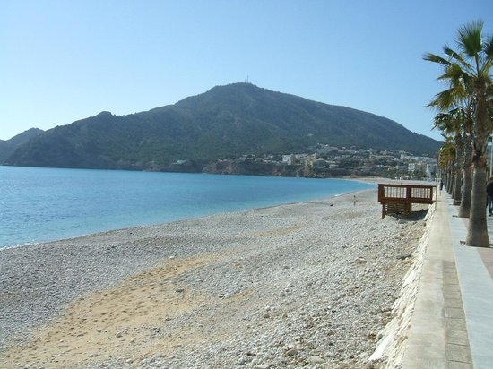 Albir Garden Resort: beach