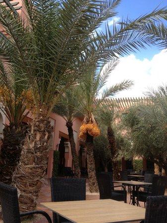 Hotel Les Jardins de l'Agdal: Terrasse