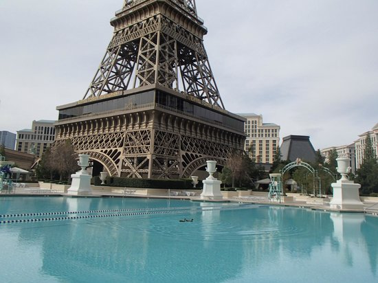 Pool area picture of paris las vegas las vegas for Paris hotel pool