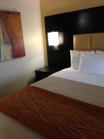 Comfort Inn: Clean and modern