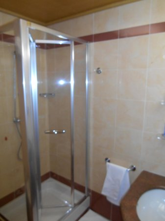 ADI Hotel Poliziano Fiera: shower (bidet to the left)