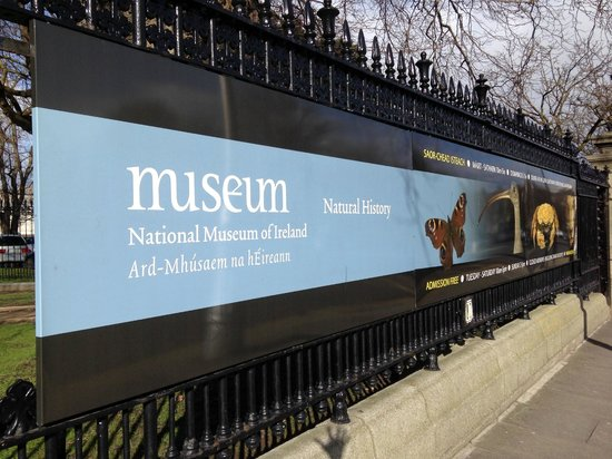 Irisches Nationalmuseum – Naturhistorische Abteilung: Перед входом в музей.