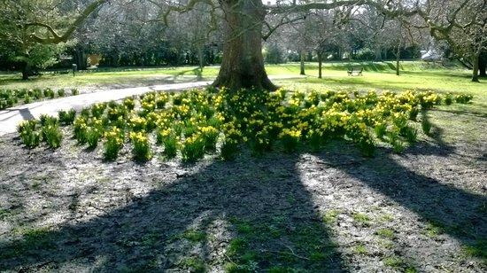 Henrietta Park: early spring 2