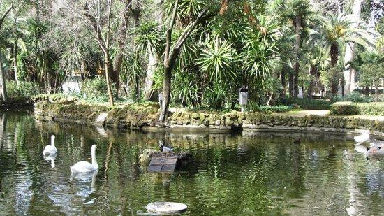 Parque de Maria Luisa: Парк Марии-Луизы