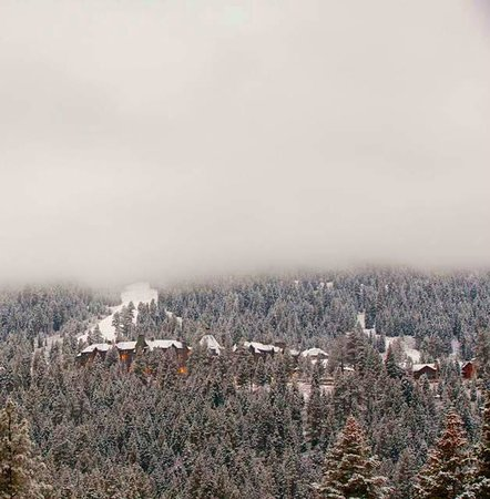 The Ritz-Carlton, Lake Tahoe : Ski in ski out