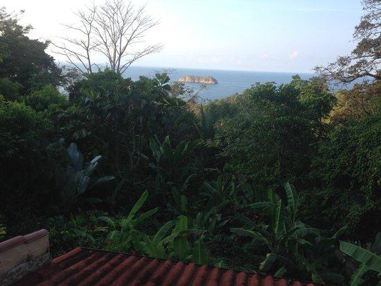 Emilio's Cafe: View