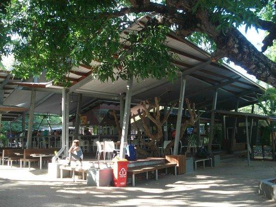 Bungalow Bay Koala Village : Entrada do albergue