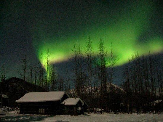 Northern Alaska Tour Company: Northern Lights / Aurora dancing above the cabins in Wiseman Alaska.