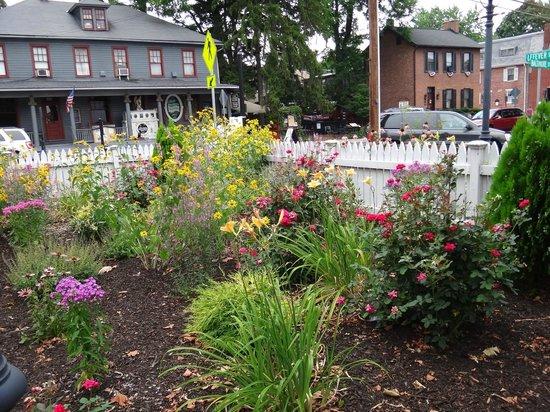 Mr. G's Ice Cream: The flower garden across the street from Mr G's