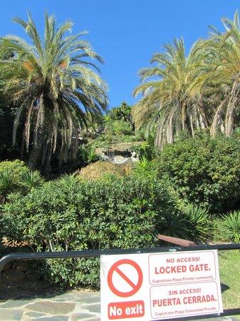 Capistrano Playa: de tuin vanaf burriana beach