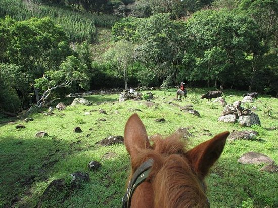 Finca Lindos Ojos: horse back riding to the waterfall