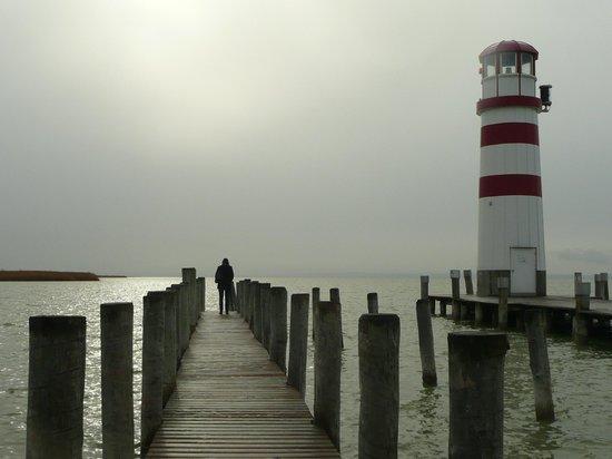 Rundfahrt Naturschutzgebiet Podersdorf: on the pier...  february in Podersdorf am See
