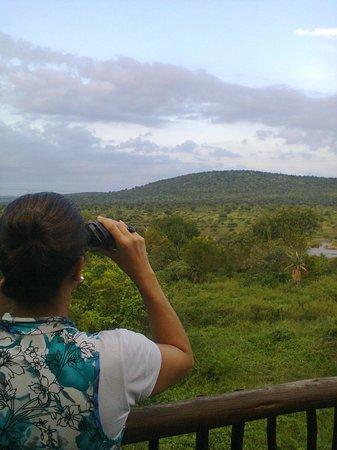 Kruger View Lodge : Vista do Promontório da Pousada