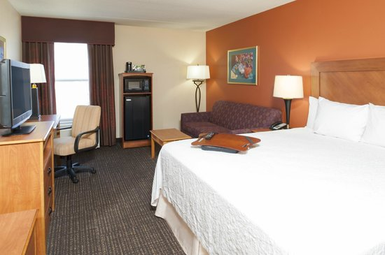 Hampton Inn Muskegon: Standard King Room