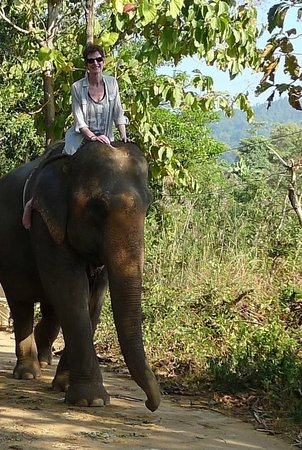 Next Step Thailand (Travel with Joe) Cycling and Hiking Private Day Tours : Elephant ride