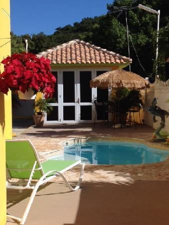 Turtle Bay Inn : patio area