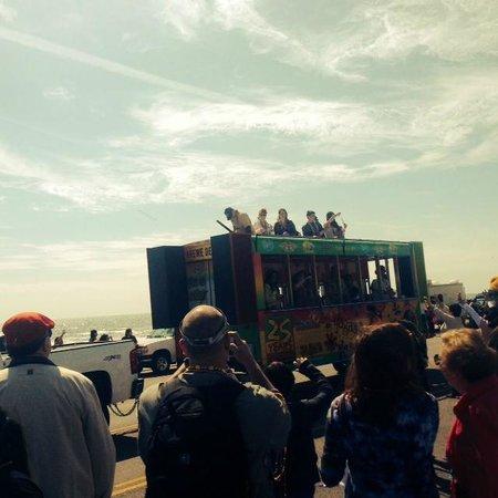 The Seawall: Mardi Gras Parade 2014