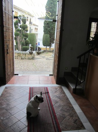 Hotel Plateros: местный сторож)))