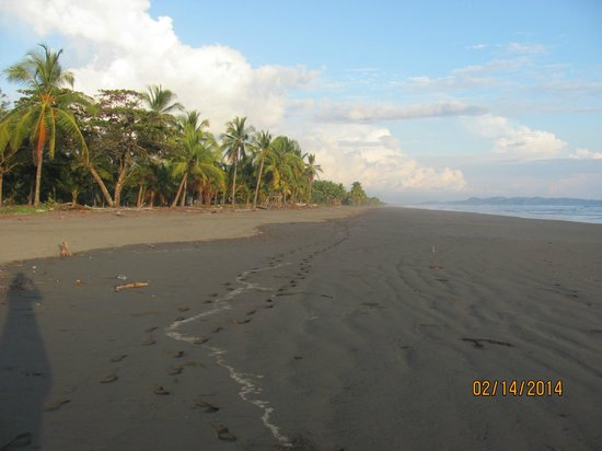 Hotel La Tranquilidad: beautiful beach
