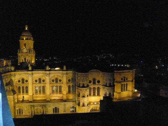 AC Hotel Malaga Palacio: La catedral a medianoche