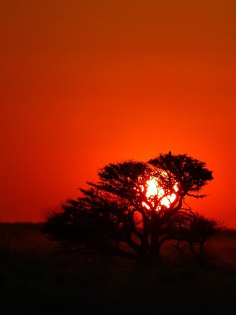 Hello Namibia Safaris: Sunsets that fill your heart with wonder