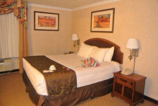 Best Western Airport Albuquerque InnSuites Hotel & Suites: BED