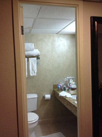 Lexington Hotel- Indianapolis Airport: Tiny bathroom