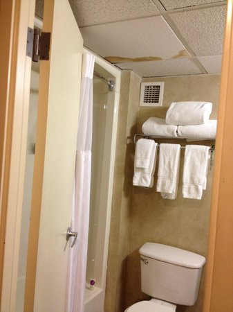Lexington Hotel- Indianapolis Airport: Different ceiling tiles and with stains.  Very small bathroom
