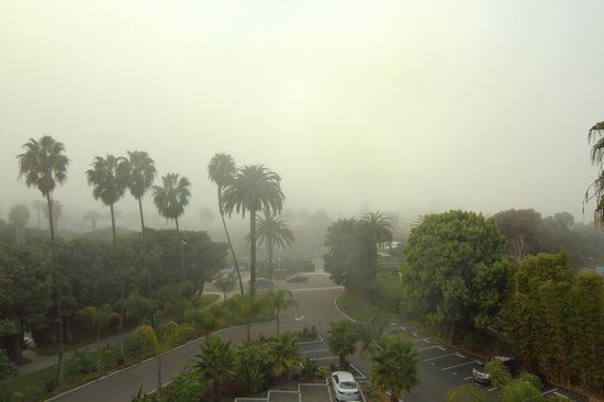 Hotel La Jolla, Curio Collection by Hilton: View from our room on a foggy evening - so cool!