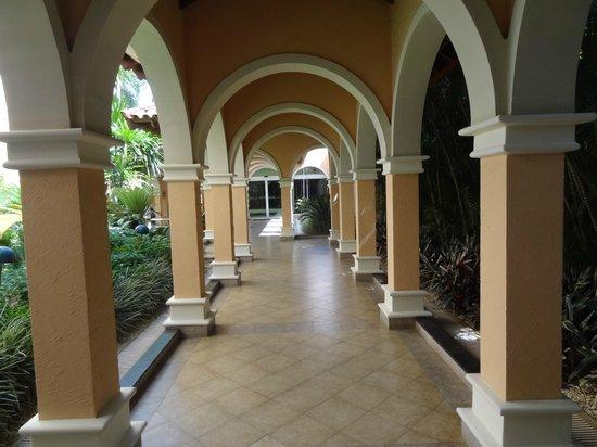 Royal Palm Plaza Resort: Jardins.