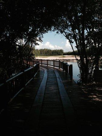 Banyan Tree Mayakoba : the golf course