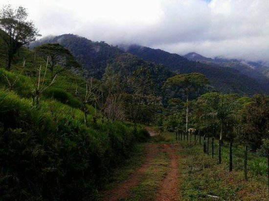 Kiri Mountain Lodge: On Walk to Waterfall