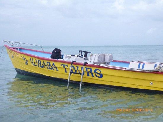 Alibaba Tours: Ocean Tour