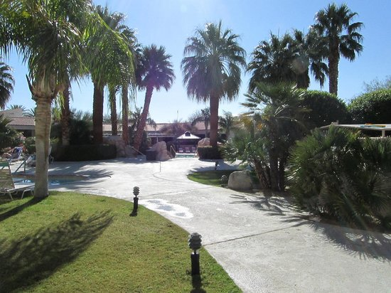 Miracle Springs Resort and Spa : Great pool area.