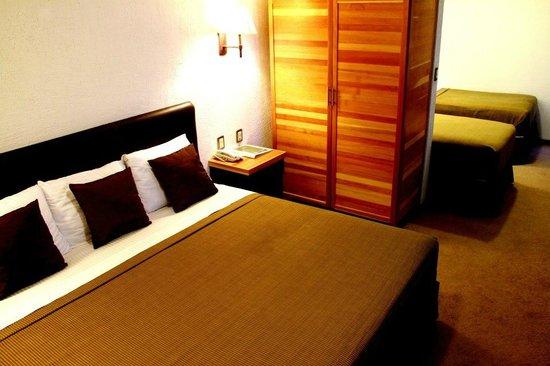 Hotel Rio Tequisquiapan: Room