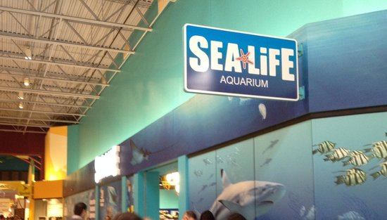 Front picture of sea life charlotte concord concord Concord mills mall aquarium