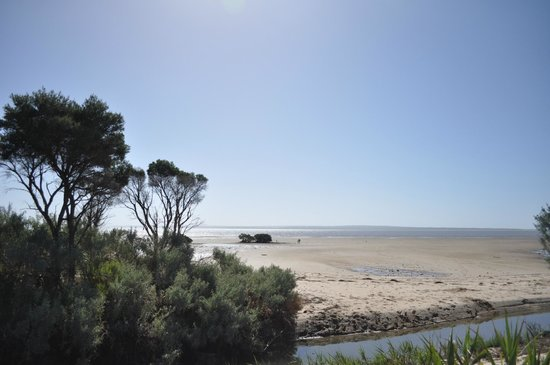 French View Caravan Park : Beach Walk