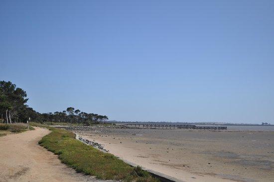French View Caravan Park : Grantville Pier