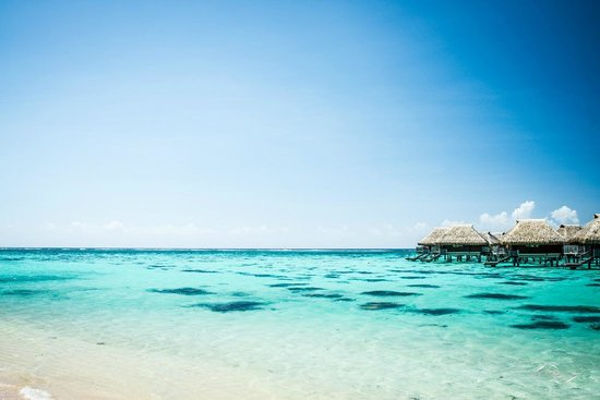 Hilton Moorea Lagoon Resort & Spa : Vue depuis la plage (Jour)