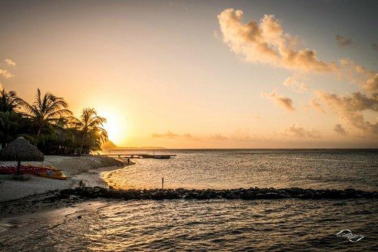 Hilton Moorea Lagoon Resort & Spa : Sunset