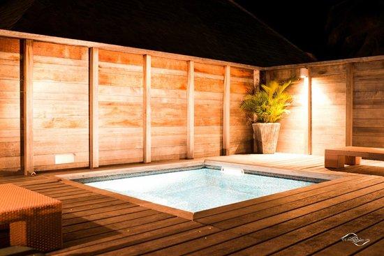 Hilton Moorea Lagoon Resort & Spa : Piscine Privative - Bungalow Jardin
