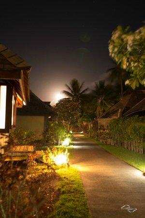 Hilton Moorea Lagoon Resort & Spa: Chemin d'accès aux chambre