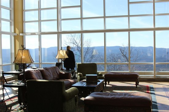 Amicalola Falls Lodge: View from Lobby