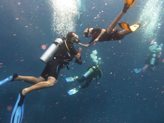Oktavia Dive Center: Misses and I