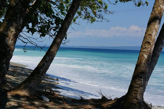 Casa Bambu Resort : Walk down the beach..not the main beach