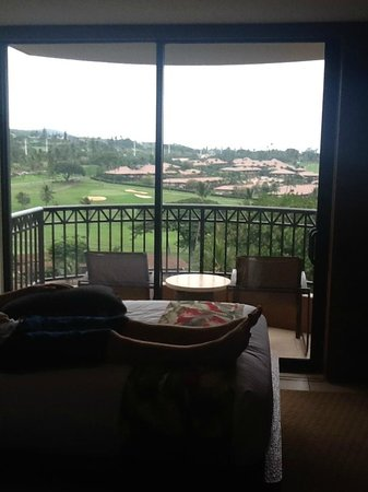 Royal Lahaina Resort: This is not ocean view!!!