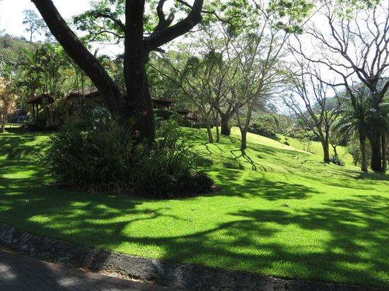 Hotel Borinquen Mountain Resort: Property