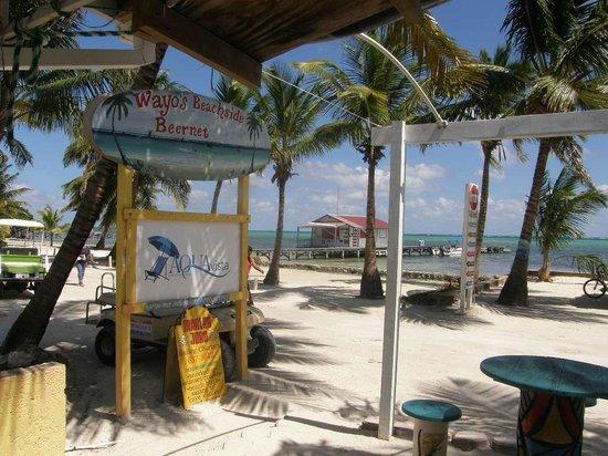 Wayos Beach Bar: I love this place!