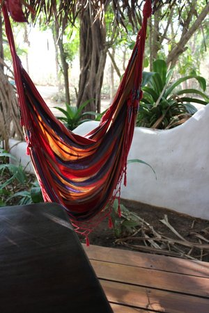 Sueno del Mar Beachfront Bed & Breakfast: hammock