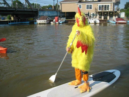 West River Paddle Sports : Downtown Chicken